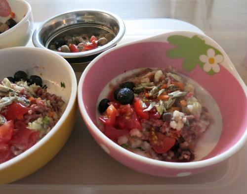生馬肉と冷製サラダ&フルーツ