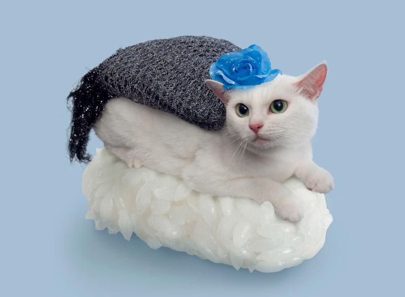 sushi-cats-tange-nakimushi-peanuts-designboom-07.jpg