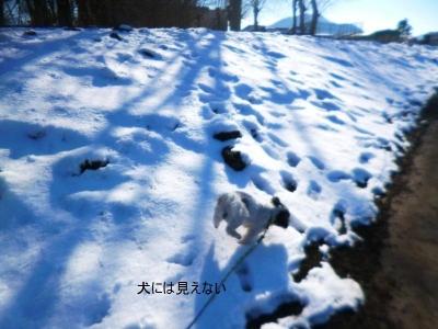 河口湖・山中湖20150315