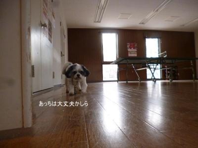 軽井沢リーオ