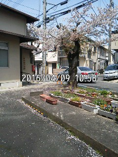 160409_1058~001