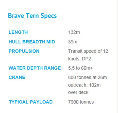 Brave Tern0