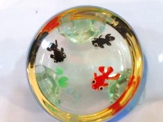 水鉢 金魚 アップ