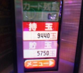 DSC_11035.jpg