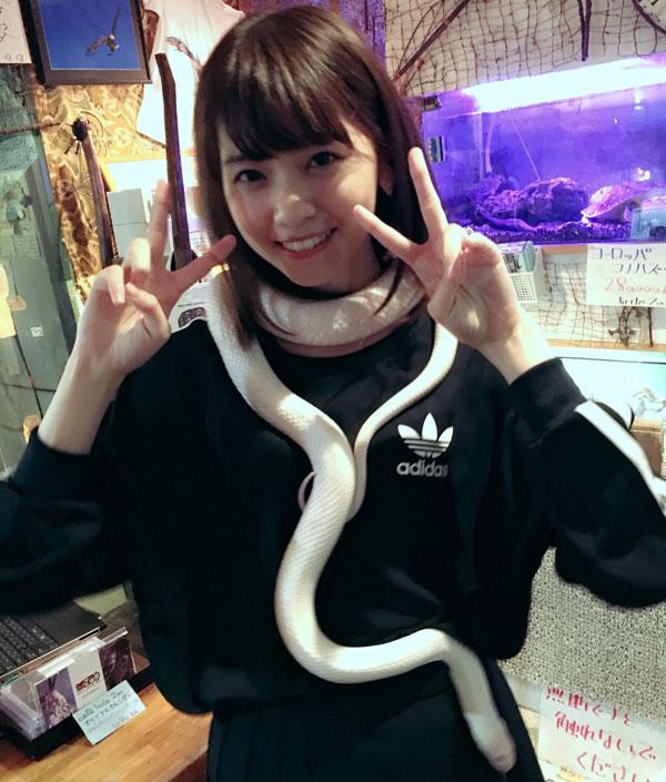 西野七瀬 爬虫類カフェ