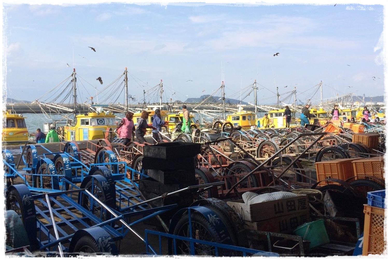 和歌山 漁港_877