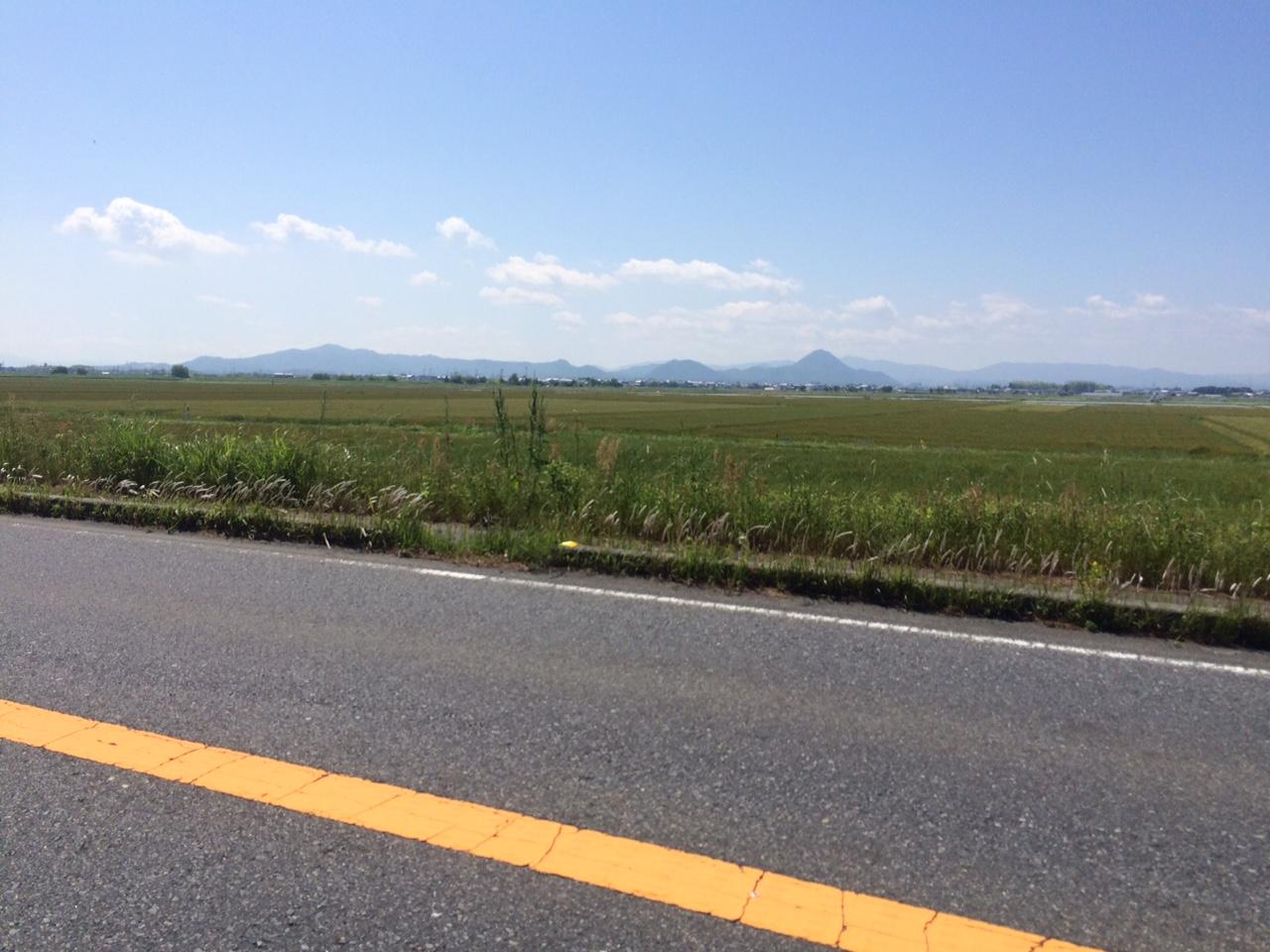 160513琵琶湖07.JPG