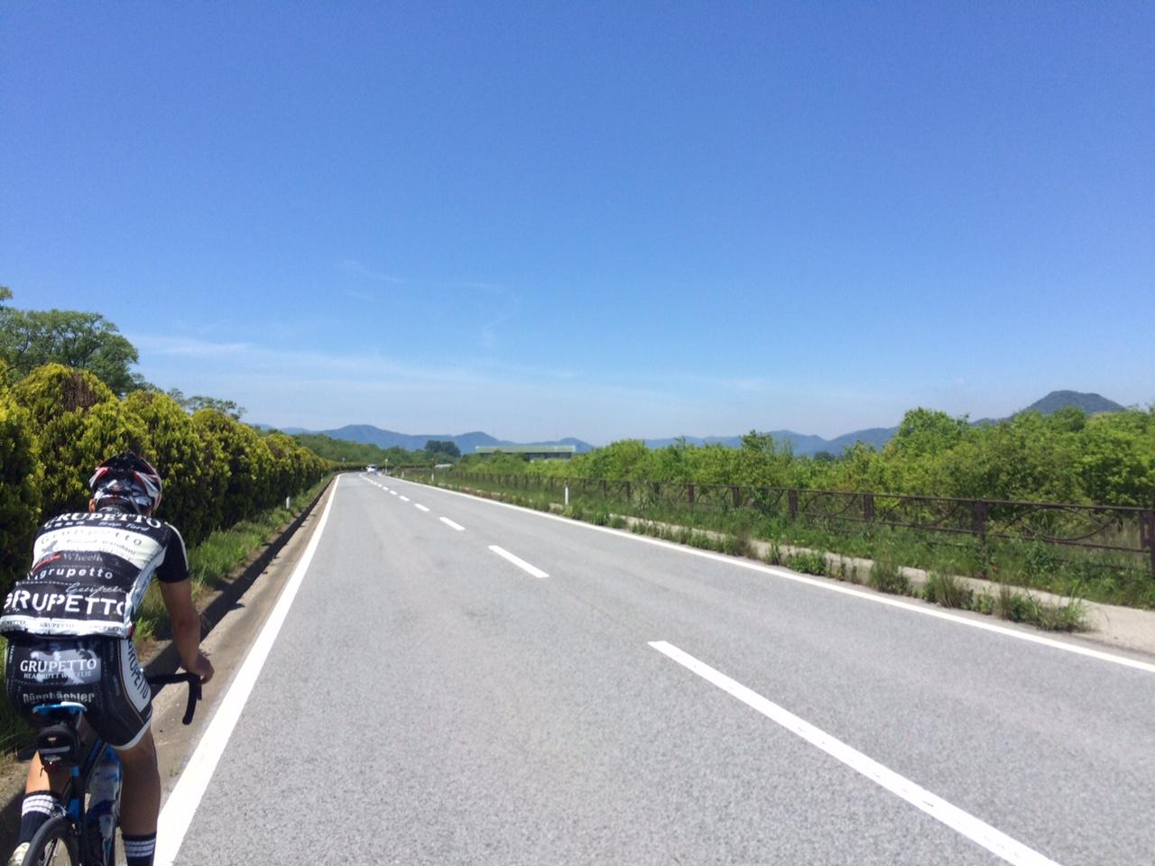 160513琵琶湖13.JPG