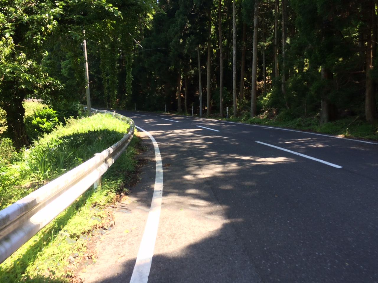 160513琵琶湖17.JPG