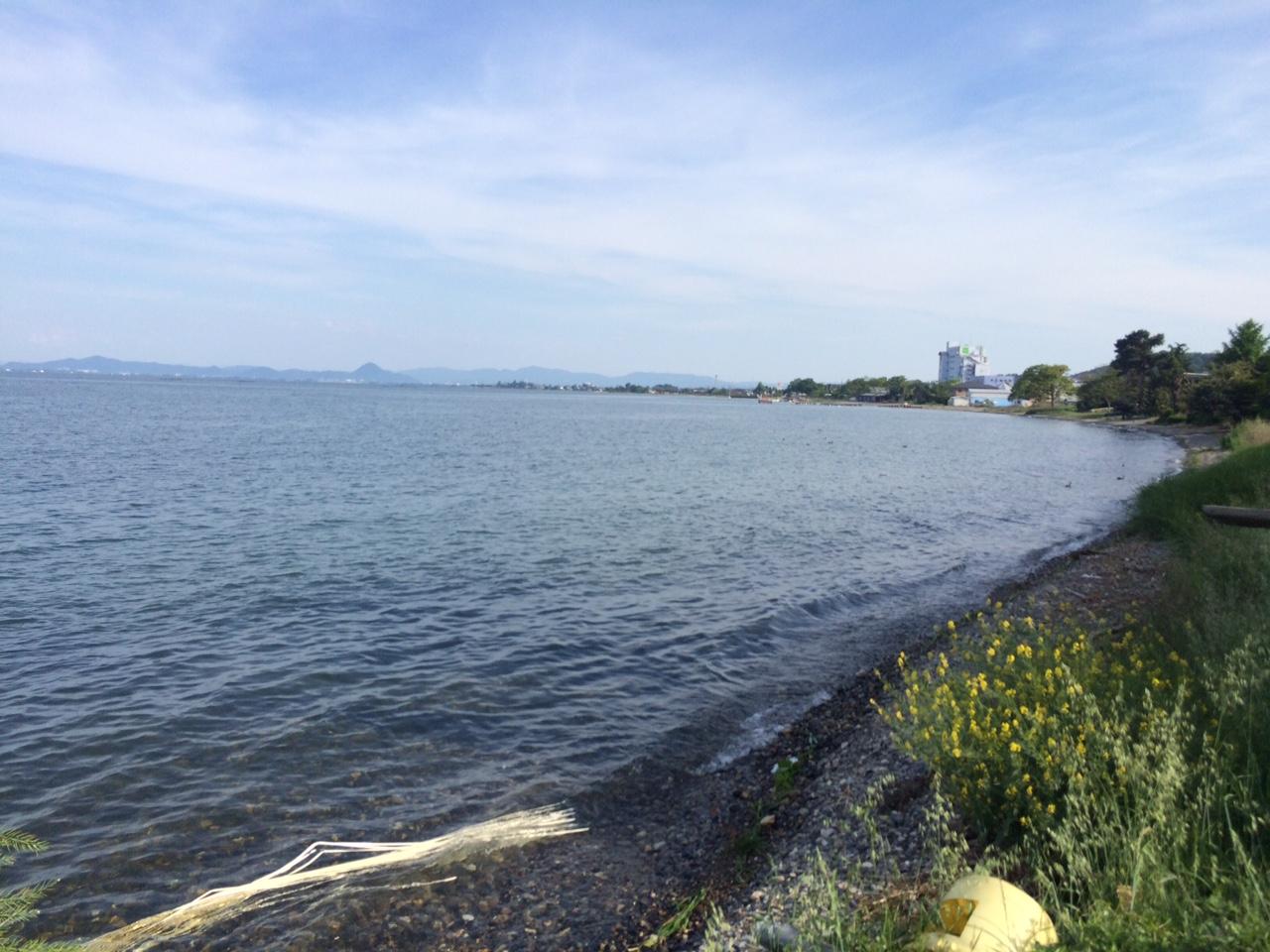 160513琵琶湖26.JPG