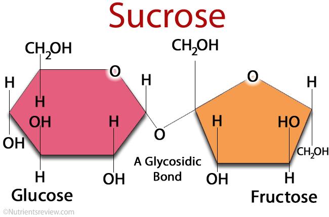 Sucrose.jpg