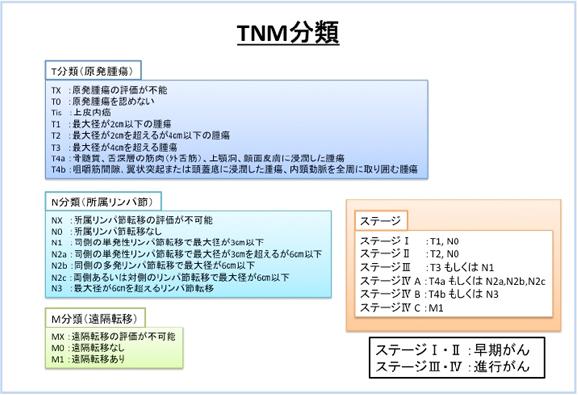 TNM.jpg