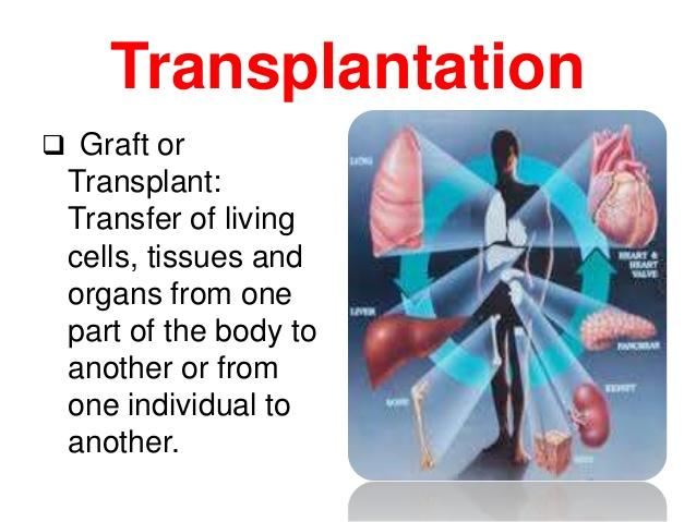 transplantation-immunology-2-638.jpg