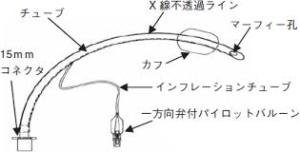 yjimage1R7WP5S7.jpg