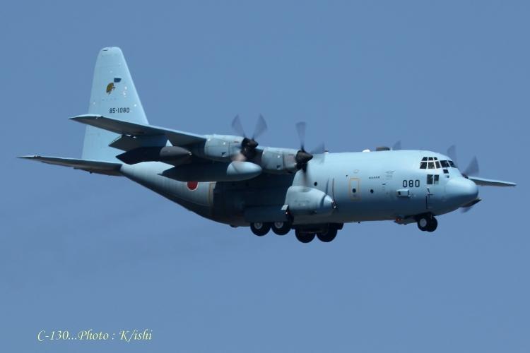 A-2031.jpg