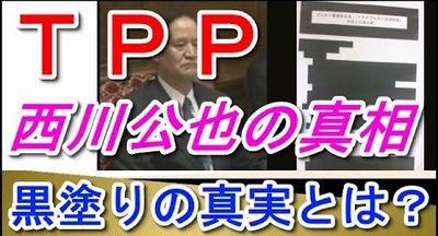 TPP西川公也