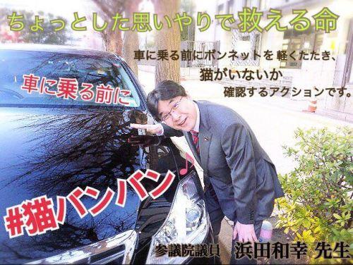 猫バンバン 浜田和幸先生 12527867_676047342537898_1537091996_n (1)