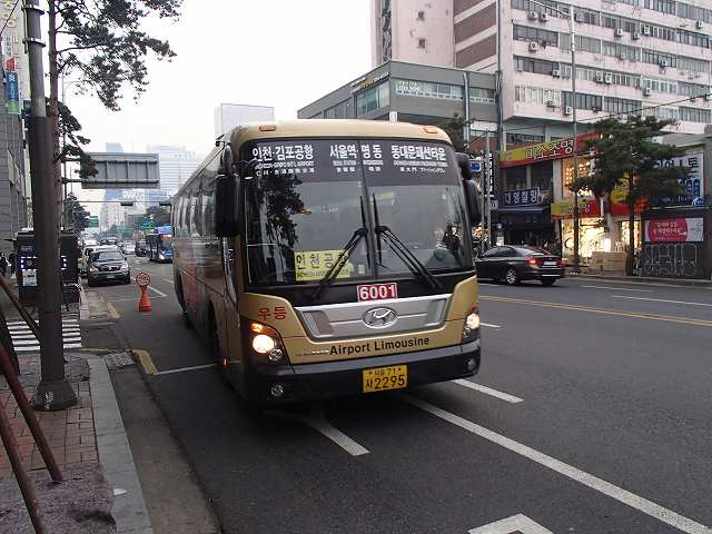 P1050206.jpg