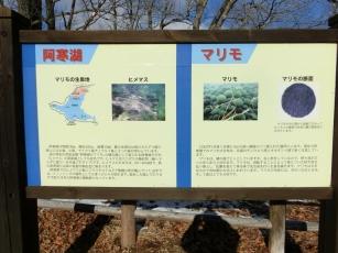 16.01.09 北海道 (11)