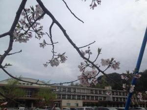 160406東郷小入学式