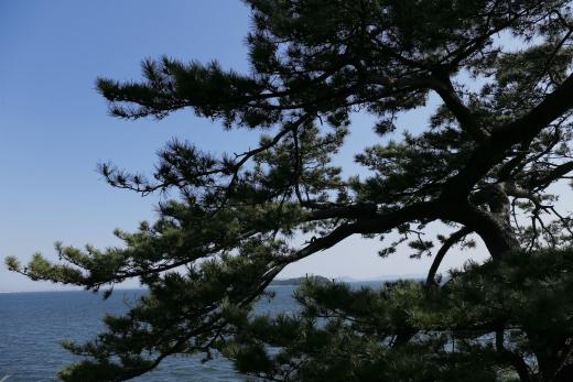 2016 05 竹島 09