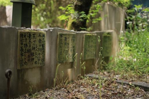 岐阜県護国神社 13