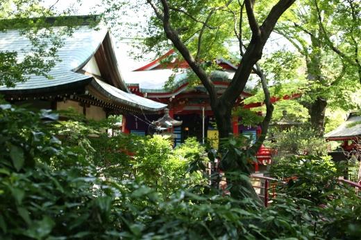 2016 05 井の頭公園 02