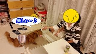 S木さんママとひっぱりっこ