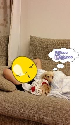 はぁ・・・眠たい
