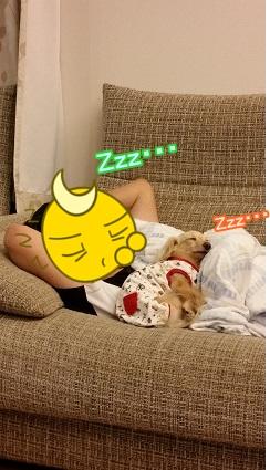 寝ちゃった・・・w