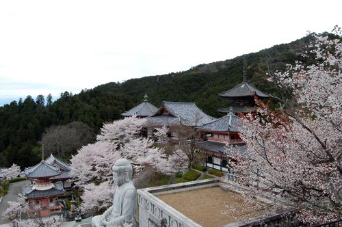 160403壺阪寺