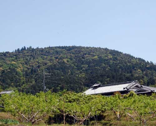 160502三輪山