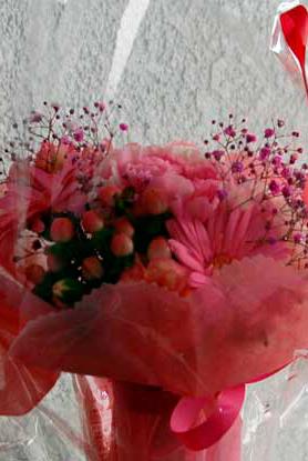 160508花
