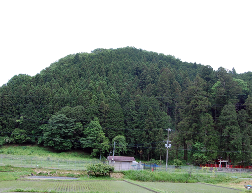 160526桜葉神社2