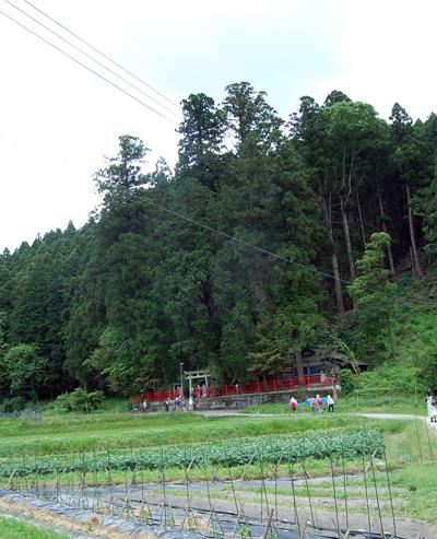 160526桜葉神社