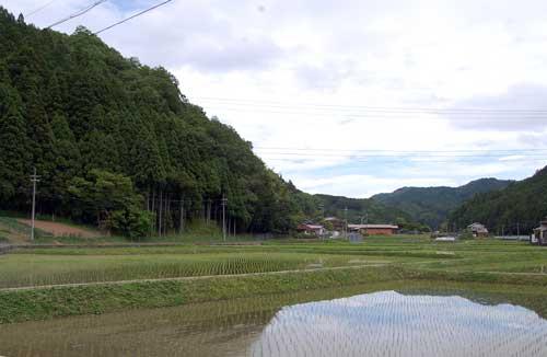 160526田園風景