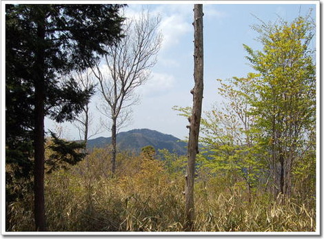 135.額井岳から鳥見山