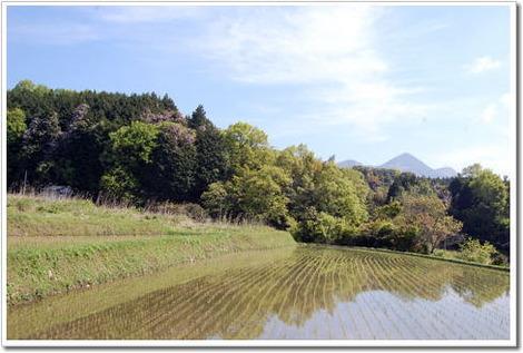 13.5.12額井岳1
