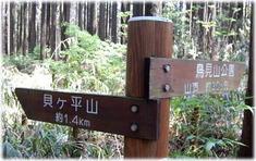 13.5.13貝ヶ平山へ