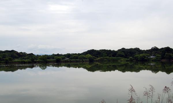 160604水上池