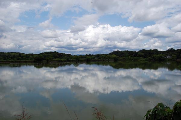 160609水上池