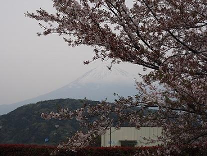 富士川SAで見えた富士山
