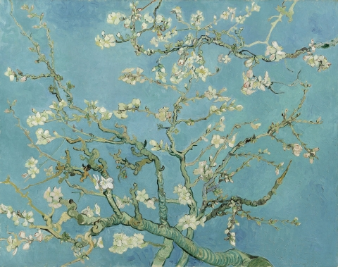 Vincent_van_Gogh_-_Almond_blossom_-_Google_Art_Project.jpg