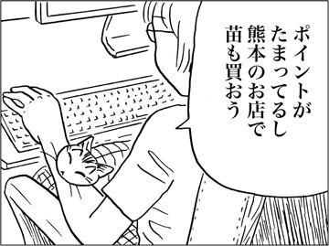 kfc00585-4