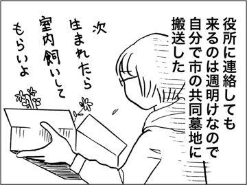 kfc00586-5