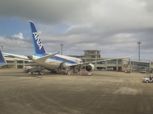 南ぬ島 石垣空港 ボーイング787
