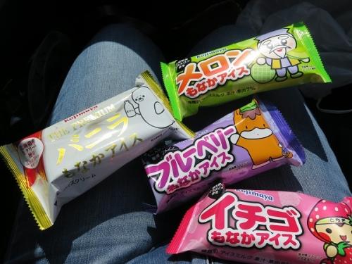 佐野SAで買ったアイス