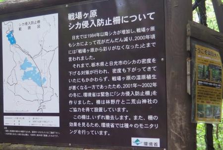 奥日光 湯滝