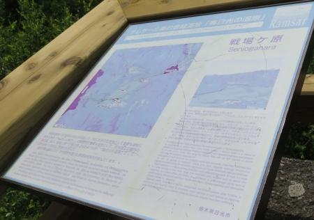奥日光 戦場ヶ原