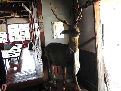 木ノ子茶屋の御主人